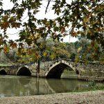 Φαράγγι του ποταμού Αγγίτη